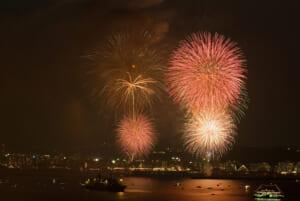 2007年(第7回)花火と錦江湾 - かごしま錦江湾サマーナイト大花火大会